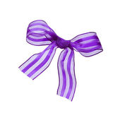 Beautiful gift bow, isolated on the white — Stock Photo