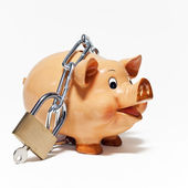 Piggy bank secured with padlock isolated on white background. — Stock Photo