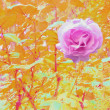 PINK ROSE IN AUTUMN LEAVES — Stock Photo