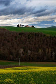 A hill in the Tuscany — Stock Photo