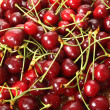 Cherry — Stock Photo #14274835