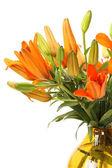 Yellow lilies — Photo