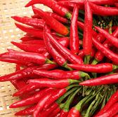 Red Hot Chili — Stock Photo