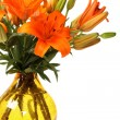Orange lillies - Photo