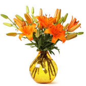 Orange lillies — Stock Photo