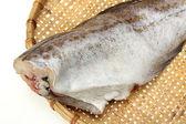Saltwater fish cod — Stock Photo