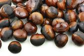 Chinese chestnut — Stock Photo
