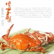 Cooked crab - Foto Stock