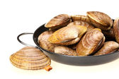 Clams in black pan,on a white background — Stock Photo