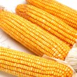 Grain corn - Stock Photo