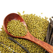 Mung beans — Stock Photo