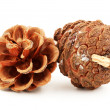 Pine cones — Stock Photo #17520773