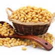 Soybean - Stock Photo