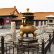 Forbidden City in Beijing — Stock Photo #17565305