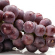Grapes on white background — Stock Photo #18303605
