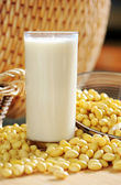 Soy milk with soy beans background — Stock Photo