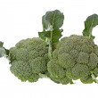 Broccoli on white background — Stock Photo