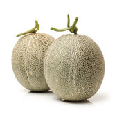 Netted melon on white background — Stock Photo