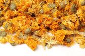 Dried Chrysanthemum Flowers On White Background — Stock Photo
