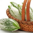 Stock Photo: Snake gourd