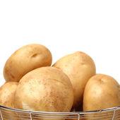 Potato on white background — Stock Photo