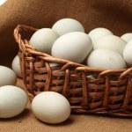 Duck eggs — Stock Photo #28090917