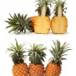 Pineapple on white background — Stock Photo #28105125
