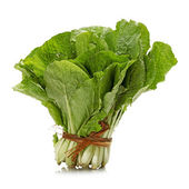 Small Chinese cabbage on white background — Stock Photo