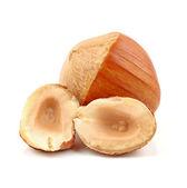 Hazelnuts on white background — Stock Photo
