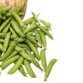 Snow peas isolated on white background — Stock Photo