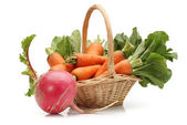 Fresh carrot and red radish on a white background — Stock Photo