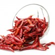 Hot red pepper isolation on white — Stock Photo