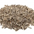 Sunflower seeds isolated on white background — Stock Photo