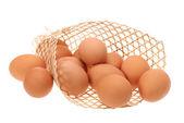 Colección de huevos aislado sobre fondo blanco — Foto de Stock