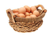 Egg collection isolated on white background — Stock Photo