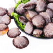 Live clams — Stock Photo #28884959