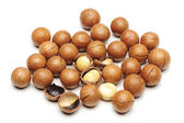 Shelled and unshelled macadamia nuts on white background — Stock Photo