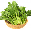 Spinach — Stock Photo #28898491