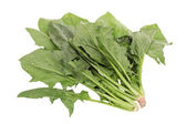 Spinach on white background — 图库照片