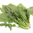 Spinach — Stock Photo #28935277