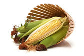 Fresh corn on the cob — Stock Photo