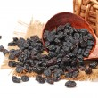 Black raisins on a white background — Stock Photo