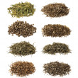 Chinese teas collection on white background — Stock Photo