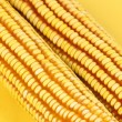 Yellow corn — Stock Photo #29618699