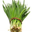 Stock Photo: Green Onion