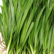 Green Onion — Stock Photo #29783161