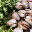 Live clams — Stock Photo #29859051