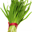 Green Onion — Stock Photo #29867149