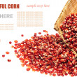 Colorful traditional corn on a white background — Stock Photo #29867939