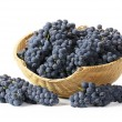 Grapes — Stock Photo #30300769